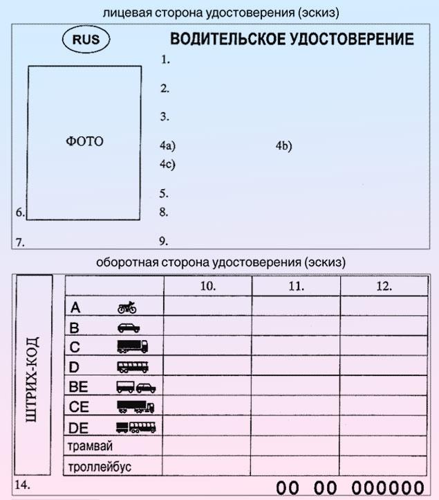обозначения в водительском удостоверении нового образца - фото 11